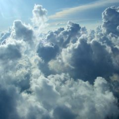How Cloud Software Helps Businesses Operate Quicker
