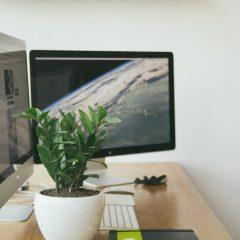 Are Virtual Desktops Going Through A Renaissance?