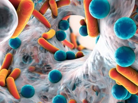 Future Markets Inc. releases The Global Market for Antimicrobial Coatings and Technologies